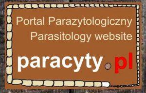 paracyty